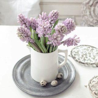 Diese Hyazinthe muss ich einfach mit euch teilen. Die Farbe ist so unglaublich schön. Das tut so gut. Ich bin total verliebt! . . . . . . #flowerlovers_on_insta #hyazinthenliebe #hyacinths #justbeautifulflowers #shabbychicwhite #soringcolours #springinspired #frühlingsblüher #stayhomeanddecorate #springinwinter